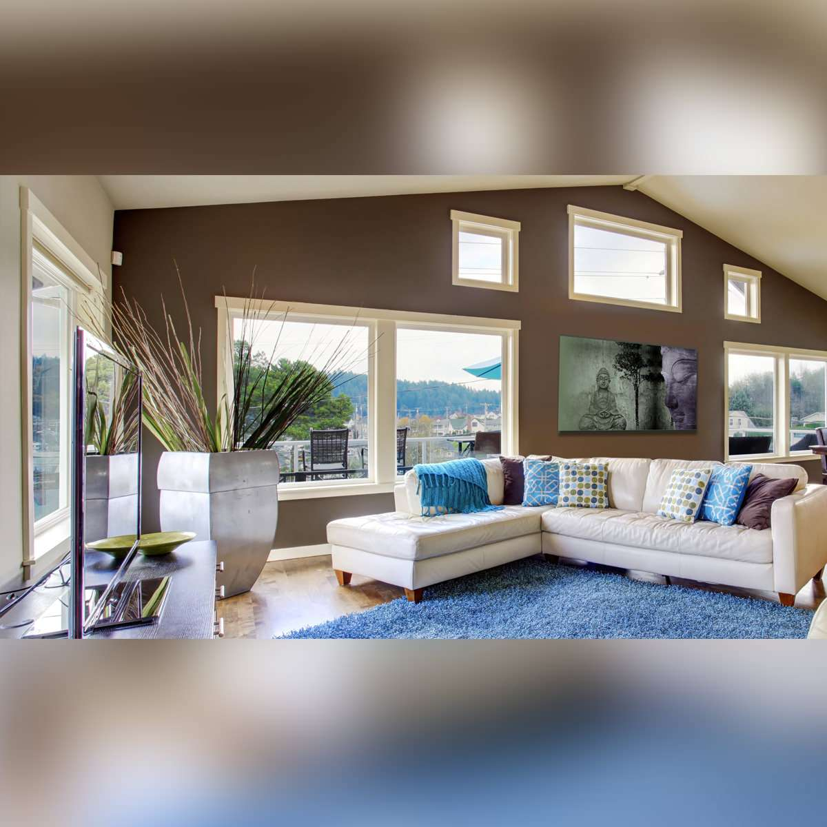 A bright living room with casement windows, a white couch, colored pillows, a blue rug, a tv and a big plant.