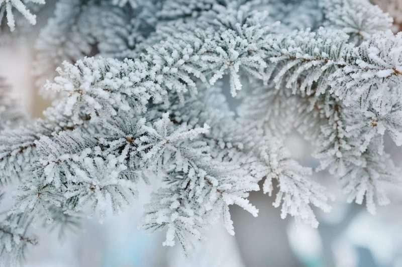 Best Windows For Colder Climates Bonneville Solutions
